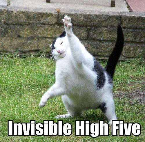 invisible_high_five-2491